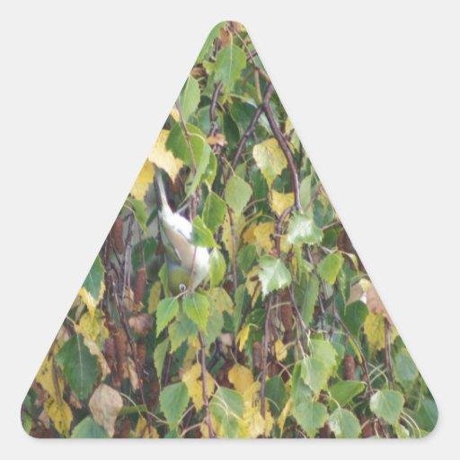 flora australiana y fauna en su más fino pegatina triangular