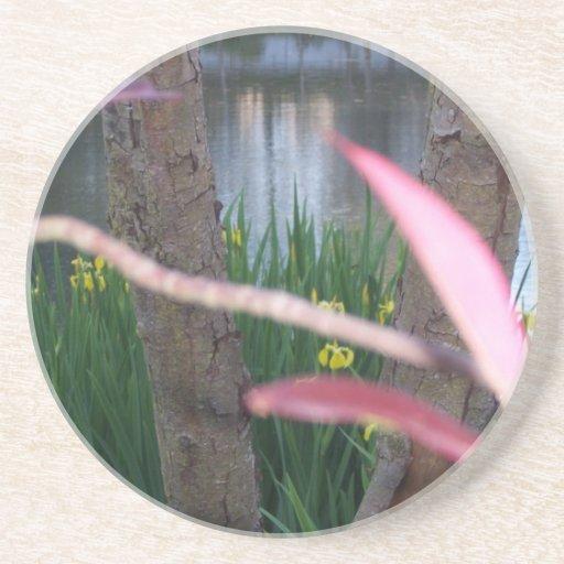 Flora de la charca posavasos personalizados