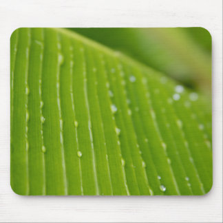 Flora Dominica 2 Mouse Pad