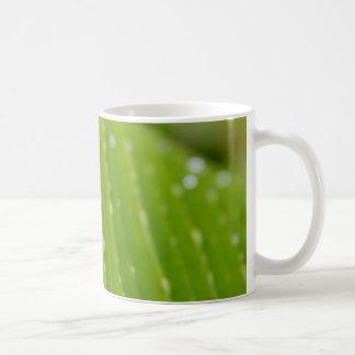Flora Dominica 2 Classic White Coffee Mug