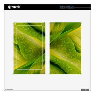 Flora Dominica 3 Kindle Fire Skins