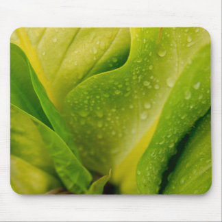 Flora Dominica 3 Mouse Pad