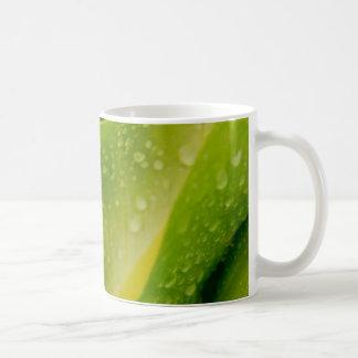 Flora Dominica 3 Classic White Coffee Mug
