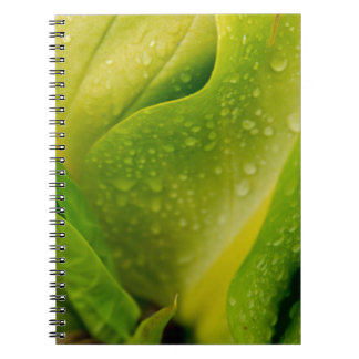 Flora Dominica 3 Spiral Note Books