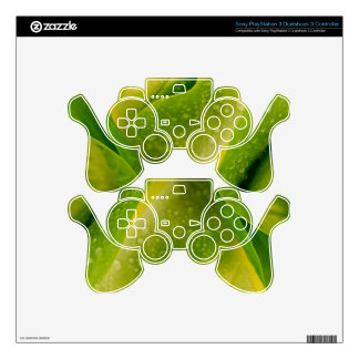 Flora Dominica 3 PS3 Controller Skins