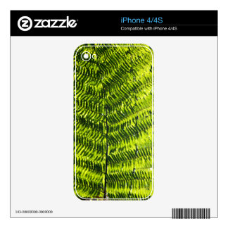 Flora Dominica 5 iPhone 4 Skins