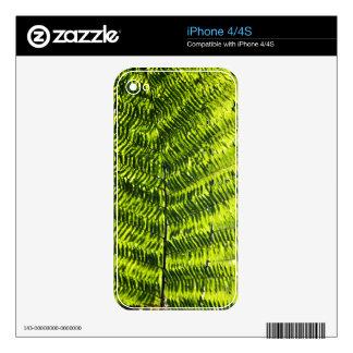 Flora Dominica 5 iPhone 4 Skins