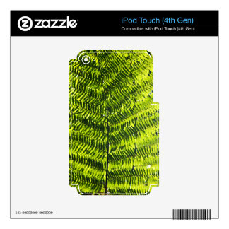 Flora Dominica 5 iPod Touch 4G Skins