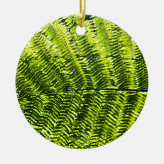 Flora Dominica 5 Christmas Ornaments