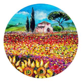 FLORA EN los campos las amapolas y los girasoles