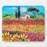 FLORA EN los campos, las amapolas y los girasoles  Tapetes De Raton