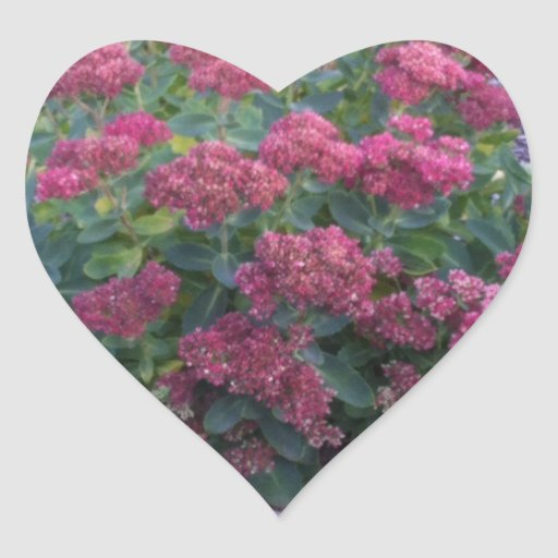 Flora Flores Pegatina En Forma De Corazón