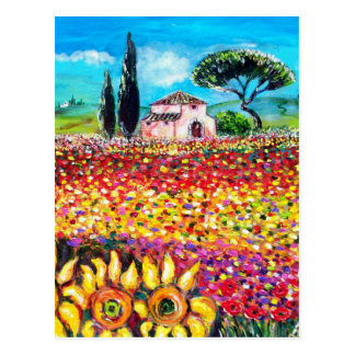 FLORA IN TUSCANY/ Fields ,Poppies and Sunflowers Postcard