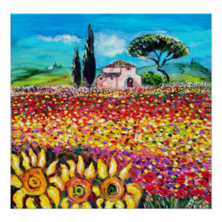 FLORA IN TUSCANY/ Fields ,Poppies and Sunflowers Poster