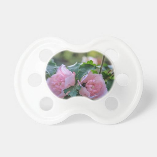 Flora Pacifiers