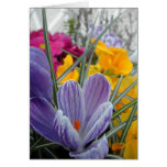 flora para la primavera #3 tarjeta de felicitación