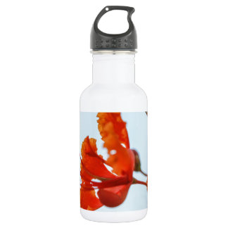 Flora Stainless Steel Water Bottle