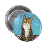 Flora the cat pinback button