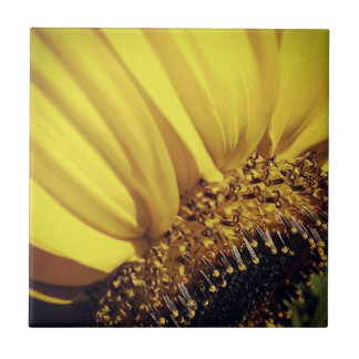 Flora Tile- Sunflower Ceramic Tile