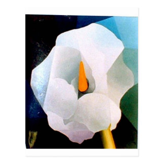 Flora y fauna tarjetas postales