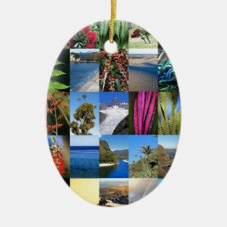 Flora y lanscapes icónicos de Nueva Zelanda Ornamento De Reyes Magos