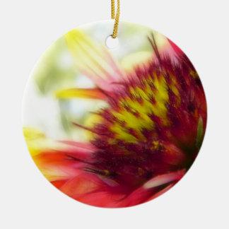 Floración abstracta de la flor combinada ornato