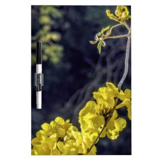 Floración amarilla de la primavera pizarra