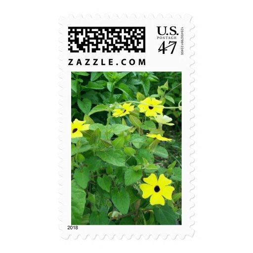 Floración amarilla timbres postales