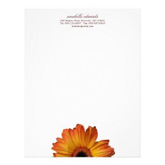 Floración anaranjada soleada de la flor de la marg plantilla de membrete