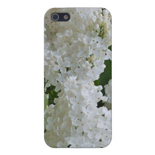 Floración blanca de la lila iPhone 5 fundas
