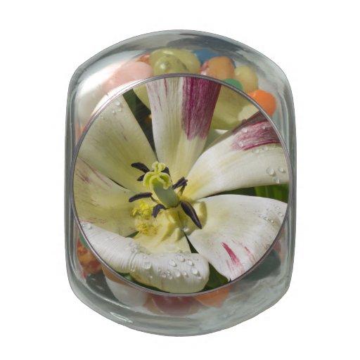 Floración blanca frascos de cristal jelly belly