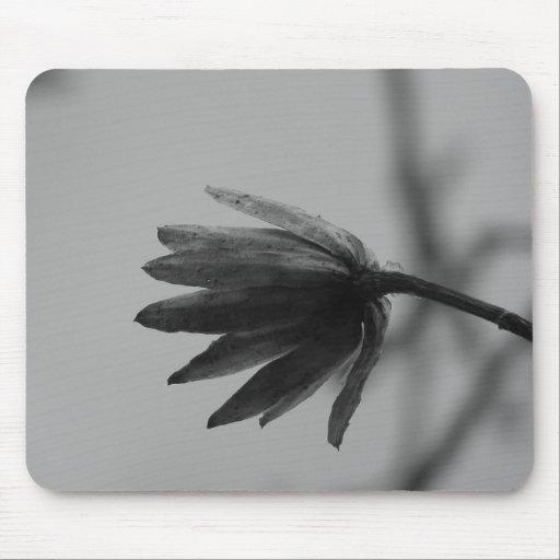 Floración blanco y negro del álamo alfombrillas de ratones