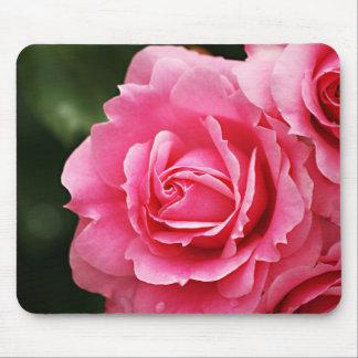 Floración color de rosa rosada de la flor mouse pads