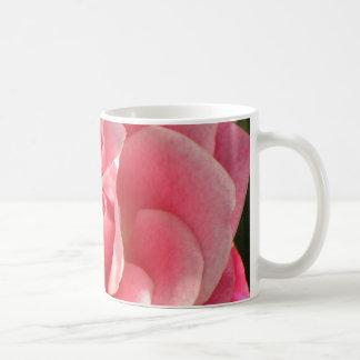Floración color de rosa rosada hermosa tazas