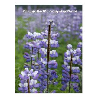 Floración con la acupuntura III Postal