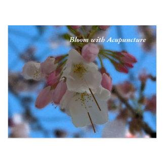 Floración con la postal de la acupuntura II