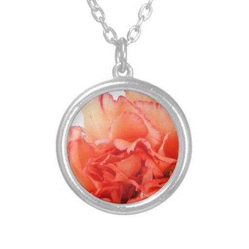 Floración coralina de la flor del clavel colgante redondo