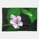 Floración de Blackberry Toalla De Mano