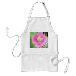 Floración de la amapola - Papaver - somniferum Delantal