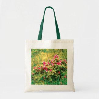 Floración de la azalea