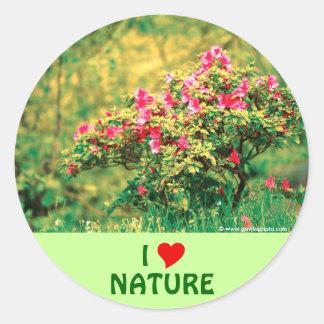 Floración de la azalea pegatina redonda