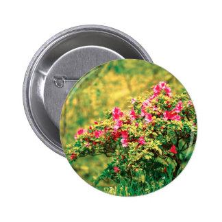Floración de la azalea pin redondo 5 cm