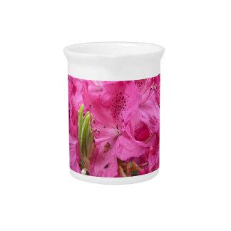 Floración de la flor del rododendro con textura jarras para bebida