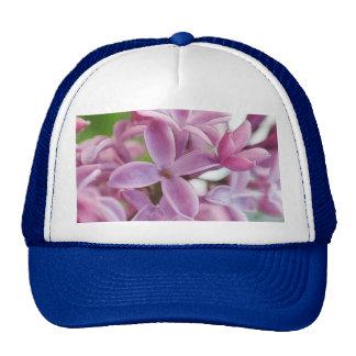 Floración de la lila en primavera temprana gorros