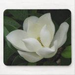 Floración de la magnolia alfombrillas de raton