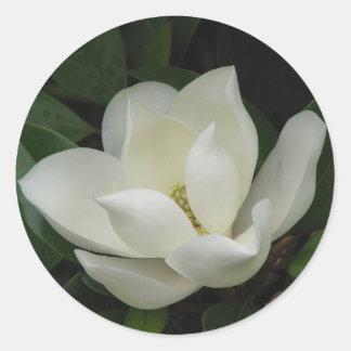 Floración de la magnolia meridional pegatina redonda
