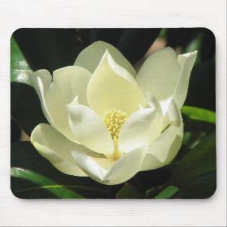 Floración de la magnolia mousepad