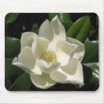 Floración de la magnolia tapetes de raton