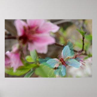 Floración de la mariposa impresiones