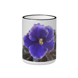 Floración de la violeta africana taza a dos colores